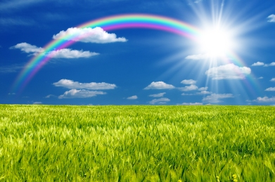 Sunshine-and-Rainbows.jpg